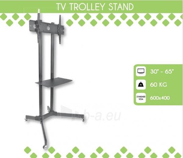 Mobilus stovas Techly sk TV LCD/LED/Plazma 30-65 60kg VESA palenk. su lent. Paveikslėlis 1 iš 5 310820037608