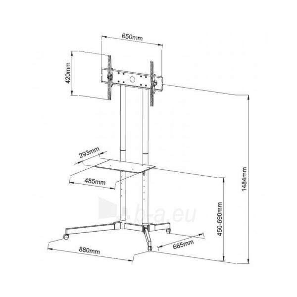 Mobilus stovas Techly sk TV LCD/LED/Plazma 30-65 60kg VESA palenk. su lent. Paveikslėlis 5 iš 5 310820037608