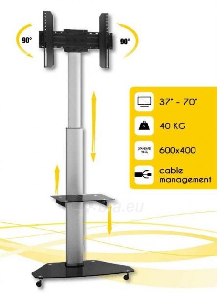 Mobilus stovas Techly skirtas TV LCD/LED/Plasma 37-70 VESA, pivot, regulioj. Paveikslėlis 1 iš 4 310820037572