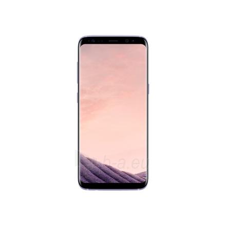 "Mobile phone Samsung Galaxy S8 G950F Orchid Grey, 5.8 "", Super AMOLED, 1440 x 2960 pixels, Exynos 8895 Octa, Internal RAM 4 GB, 64 GB, microSD, Single SIM, Nano-SIM, 3G, 4G, Main camera 12 MP, Secondary camera 8 MP, Android, 7.0, 3000 mAh Paveikslėlis 1 iš 4 310820154582"