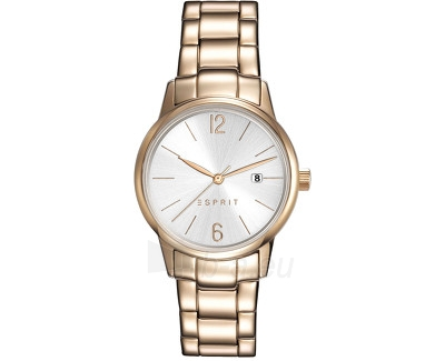 Women\'s watches Esprit ES-Abbie Rosegold ES100S62014 Paveikslėlis 1 iš 1 30069506439