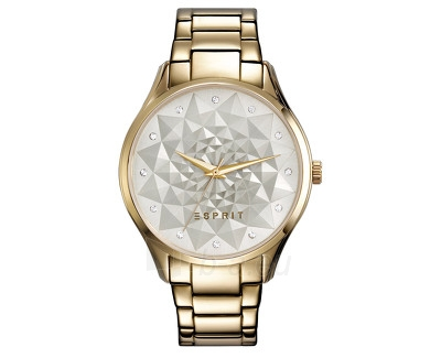 Moteriškas laikrodis Esprit Esprit TP10902 Gold ES109022002 Paveikslėlis 1 iš 1 310820027852
