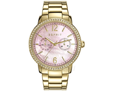 Moteriškas laikrodis Esprit Kate Gold ES108092002 Paveikslėlis 1 iš 1 30069504889