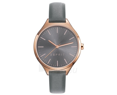 Women's watches Esprit TP10927 Grey ES109272003 Paveikslėlis 1 iš 1 310820110457