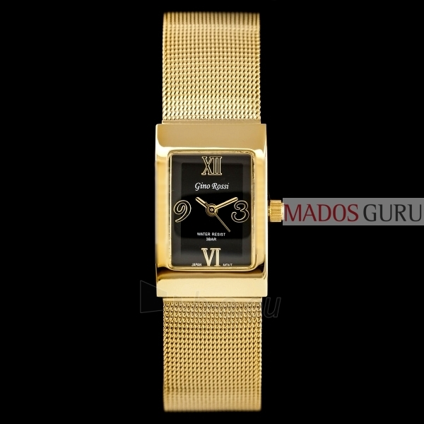Women's watch Klasikinis Gino Rossi GR6658JG Paveikslėlis 1 iš 7 30069501015