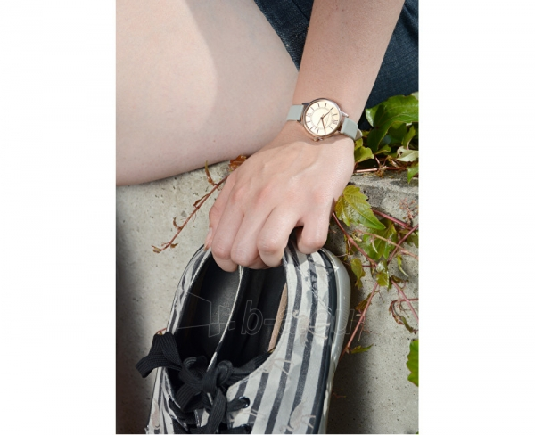 Sieviešu pulkstenis Olivia Burton Wonderland H25-128 Paveikslėlis 4 iš 5 310820028246