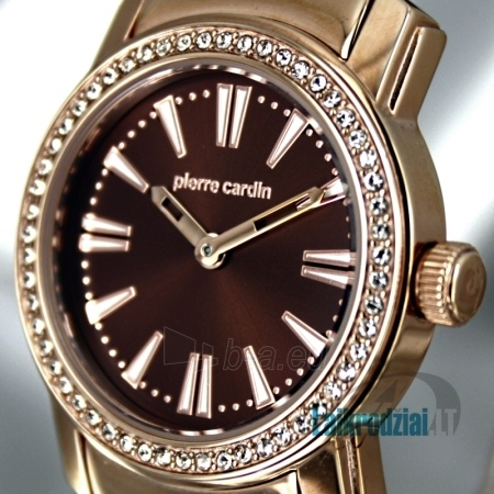 Moteriškas laikrodis Pierre Cardin PC101612F02 Paveikslėlis 6 iš 8 30069507827