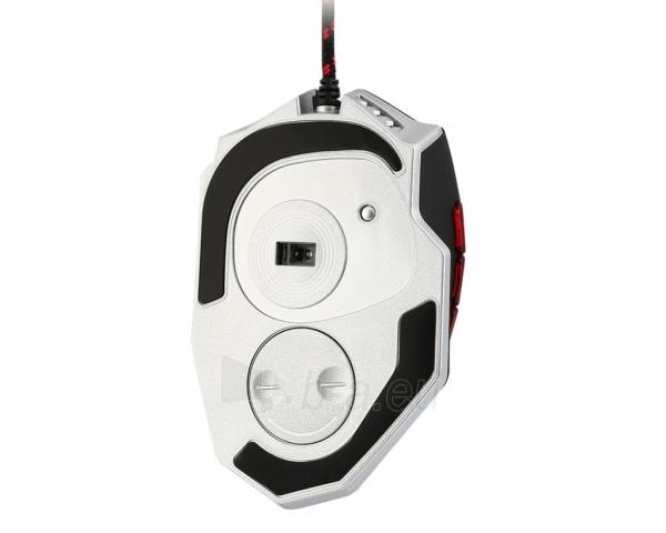 MSI Interceptor DS200 GAMING Mouse Paveikslėlis 3 iš 4 250255031656