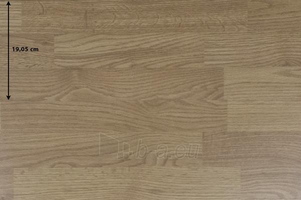 Dabas lamināta parketa grīda Balterio DK 276 VITALITY DIPLOMAT, 1261x189x8, 32 kl.,  Paveikslėlis 1 iš 1 237725000272