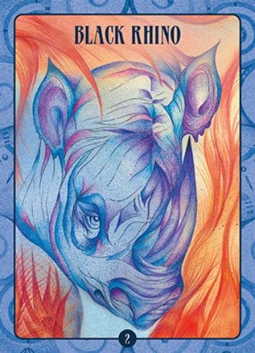 Oracle kortos Ancient Animal Wisdom Paveikslėlis 5 iš 13 310820142568