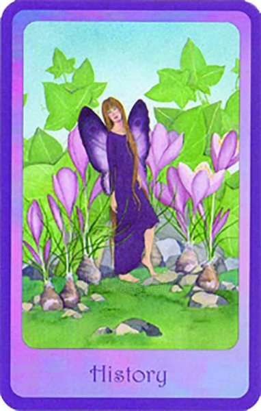 Oracle Kortos Gentle Wisdom of the Faerie Realms Paveikslėlis 5 iš 6 310820142734