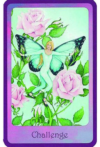 Oracle Kortos Gentle Wisdom of the Faerie Realms Paveikslėlis 6 iš 6 310820142734