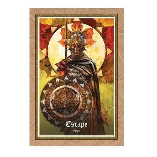 Oracle kortos The Gospel of Aradia Paveikslėlis 6 iš 9 310820142698