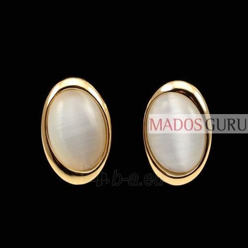 The oval-shaped earrings A190 Paveikslėlis 1 iš 2 30070000482