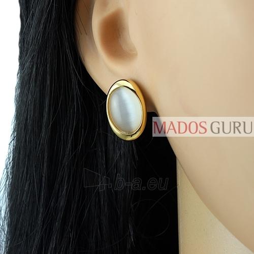 The oval-shaped earrings A190 Paveikslėlis 2 iš 2 30070000482