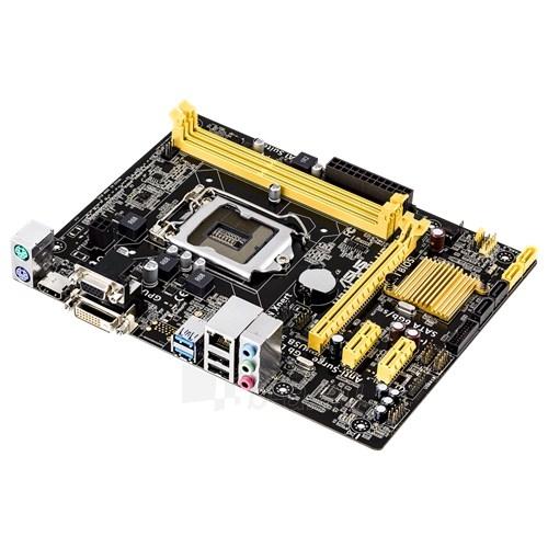 Pagrindinė plokštė ASUS H81M-P PLUS LGA1150 microATX Paveikslėlis 1 iš 1 310820017376