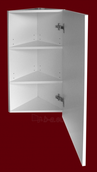 Pakabinama kampinė viršutinė spintelė su veidrodžiu 4001 E40 Paveikslėlis 3 iš 5 270760000137
