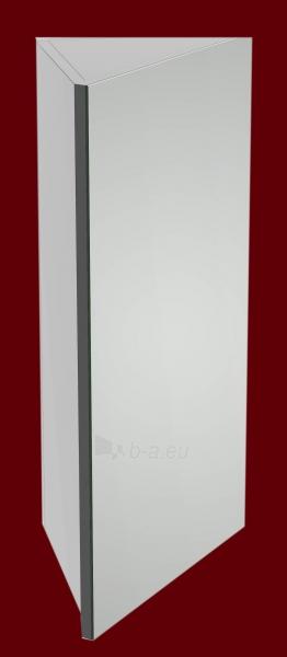 Pakabinama kampinė viršutinė spintelė su veidrodžiu 4001 E40 Paveikslėlis 5 iš 5 270760000137
