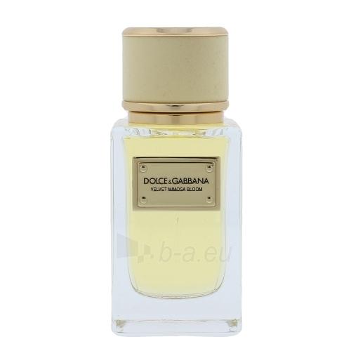 Perfumed water Dolce & Gabbana Velvet Mimosa Bloom EDP 50ml Paveikslėlis 1 iš 1 310820042562