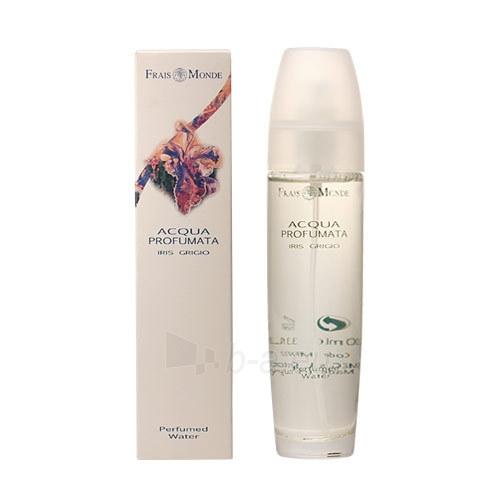 Parfumuotas vanduo Frais Monde Iris Gray Perfumed Water Cosmetic 100ml Paveikslėlis 1 iš 1 310820025111