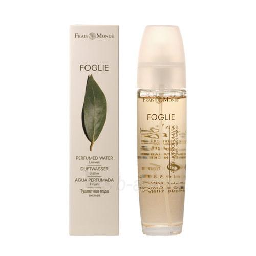 Perfumed water Frais Monde Leaves Perfumed Water Cosmetic 100ml Paveikslėlis 1 iš 1 310820025108