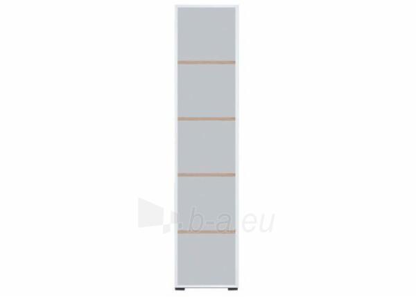 Pastatoma lentyna COL11 Paveikslėlis 1 iš 5 301252000007