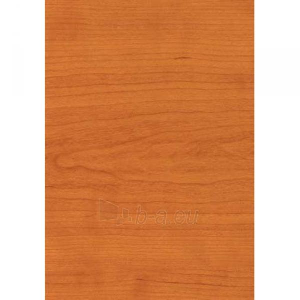 Plastikinės dailylentės vyšnios spalvos 270x25 cm Paveikslėlis 1 iš 1 310820060156