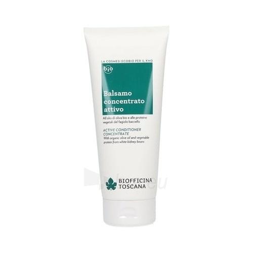Plaukų kondicionierius Biofficina Toscana Active conditioner for damaged hair ( Active C onditioner Concentrate ) 200 ml Paveikslėlis 1 iš 1 310820106346