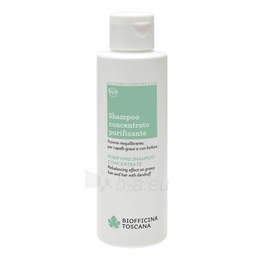 Plaukų šampūnas Biofficina Toscana (Purifying Shampoo Concentrate ) 150 ml Paveikslėlis 1 iš 1 310820120897