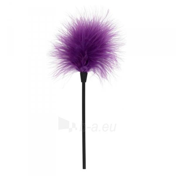 Plunksna Išdykaukim (violetinė) Paveikslėlis 1 iš 2 310820148634