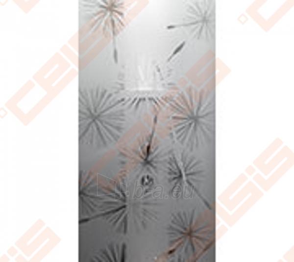 Priekinė stiklo dalis dušo bokso IDO Showerama 8-5 100x100, Dandeleon II ir matinio aliumio profiliu Paveikslėlis 1 iš 6 270730001033