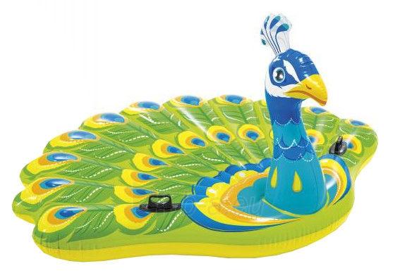 Pripučamas žaislas Intex Peacock 57250EU Paveikslėlis 1 iš 3 310820153786