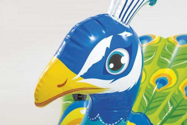 Pripučamas žaislas Intex Peacock 57250EU Paveikslėlis 2 iš 3 310820153786