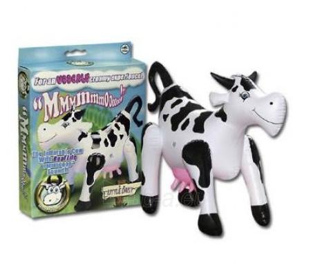 Pripučiama karvė Paveikslėlis 1 iš 2 310820021325