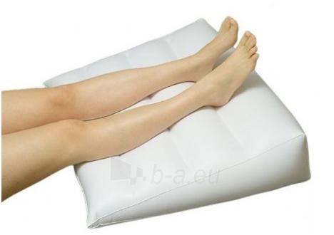Pripučiama pagalvėlė nuo venų išsiplėtimo 43720 Paveikslėlis 1 iš 1 310820217008