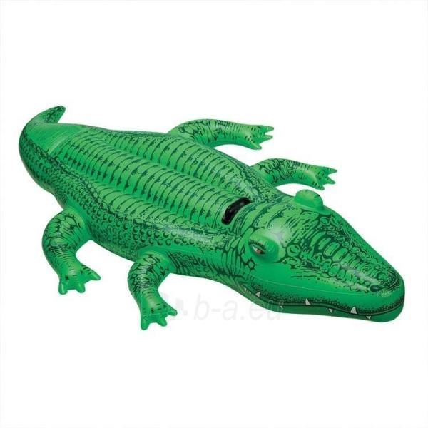 Piepūšamās ūdens rotaļlieta INTEX Lil Gator Paveikslėlis 1 iš 3 2505303000008