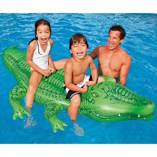 Piepūšamās ūdens rotaļlieta INTEX Lil Gator Paveikslėlis 2 iš 3 2505303000008