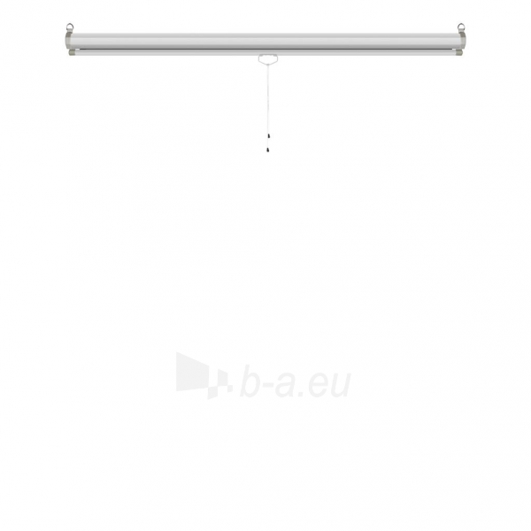 Projektoriaus ekranas ART manual display semi-automat 4:3 120 244x183cm MS-120 4:3 Paveikslėlis 8 iš 11 310820101802