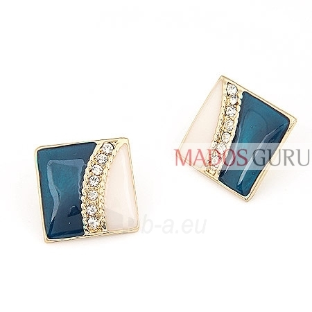 Decorated earrings A2578 Paveikslėlis 1 iš 1 30070002500