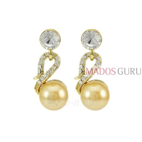 Puošnųs earrings A621 Paveikslėlis 1 iš 2 30070002447