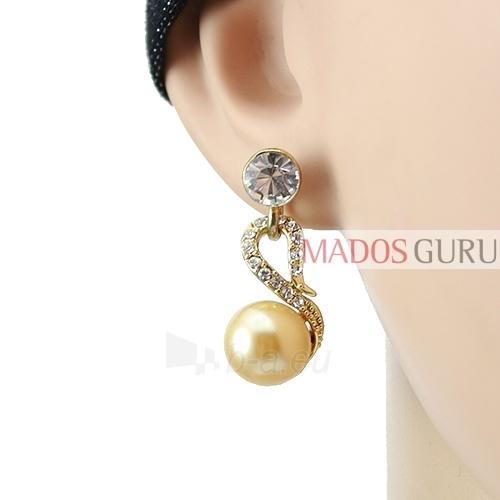 Puošnųs earrings A621 Paveikslėlis 2 iš 2 30070002447