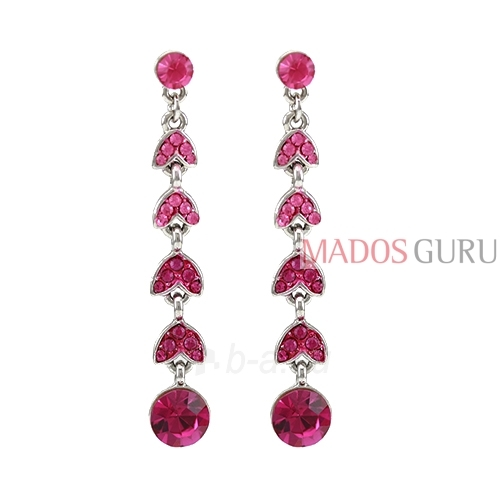 Decorated earrings A751 Paveikslėlis 1 iš 2 30070002411