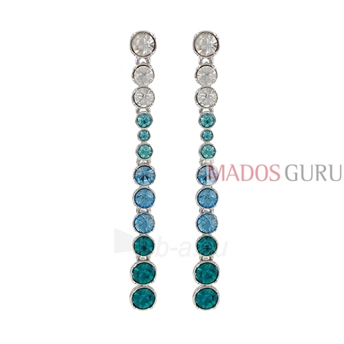 Decorated earrings A754 Paveikslėlis 1 iš 2 30070002414