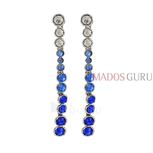 Decorated earrings A755 Paveikslėlis 1 iš 2 30070002415