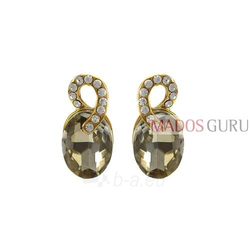 Decorated earrings A910 Paveikslėlis 1 iš 2 30070002526