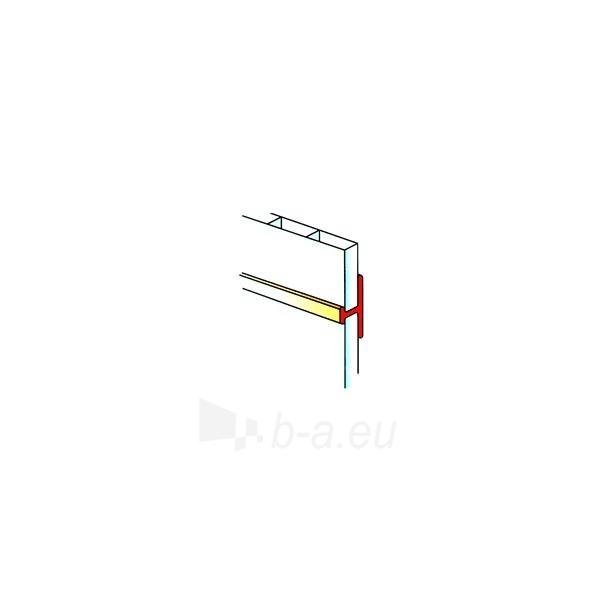PVC dailylenčių jungimo profilis Paveikslėlis 1 iš 1 237714000517