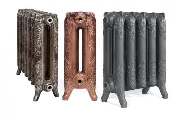 Radiatorius ketinis sekcijinis WINDSOR 600/180, koja (surinktas*, sidabro spalva) Paveikslėlis 3 iš 3 310820236002