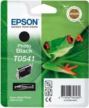 Rašalas Epson T0541 photo black | Stylus Photo R800/1800 Paveikslėlis 1 iš 1 2502534500400