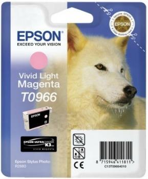 Rašalas Epson T0966 vivid light magenta UltraChrome K3 | Stylus Photo R2880 Paveikslėlis 1 iš 1 2502534500446