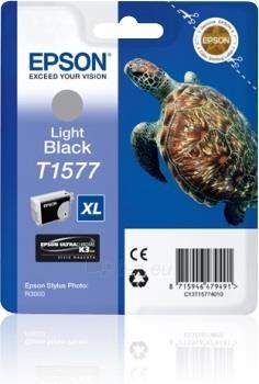 Rašalas Epson T1577 Light black | 25,9 ml | R3000 Paveikslėlis 1 iš 1 2502560202336